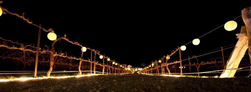 fence_lighting